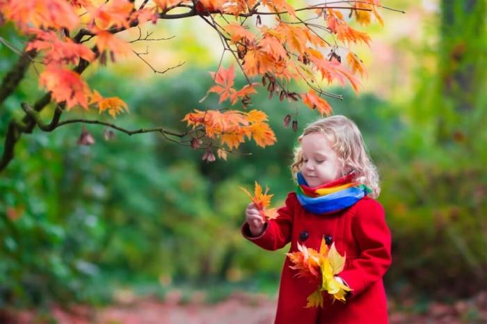 Полезные игры для детей на природе