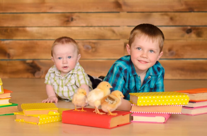 Сказки и стихи про животных для малышей 1-3 лет